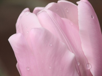 pink_diamond.jpg