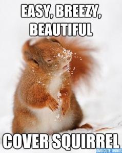 Cover squirrel