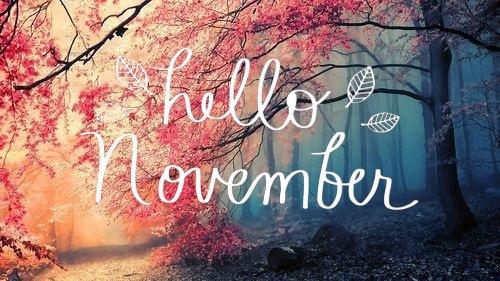 November  Stray Thoughts