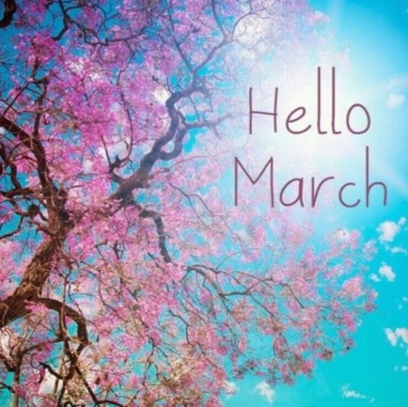 120-hello-march-quotes-6622-9