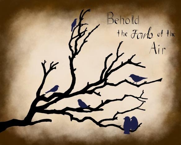 Bird 1 (2)